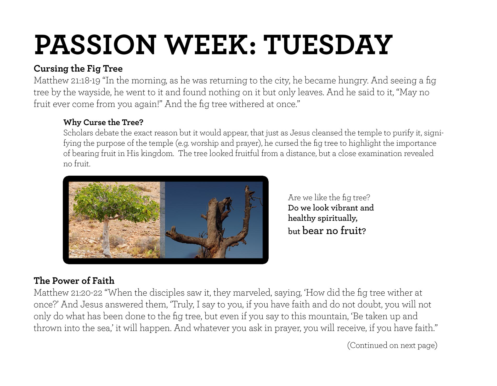 PASSION WEEK: TUESDAY Matthew 21:18-19